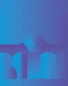 litm-logo